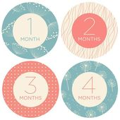 Baby Girl Monthly Milestone Stickers – Simple Floral Design – Baby Month Stickers – 1 to 12 months – – Products