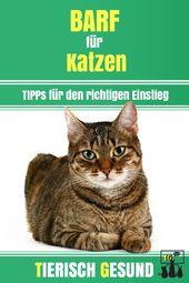 Bisher kennt man das BARFen eher aus dem Bereich der Hundeernährung, doch auch … – Katze – Ernährung