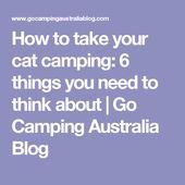 Hur du tar din kattcamping: 6 saker du behöver tänka på- #camping # cat- …