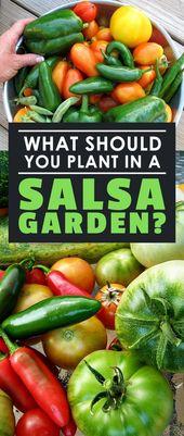 Que faut-il planter dans un jardin de salsa?   – Gardening