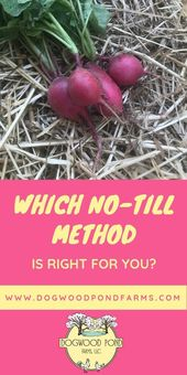 No-till Gardening Methods: How No-till Gardening can Change your Life
