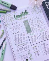 Genetik study Notizen. Biologie hilfe zu DNA. Mito…