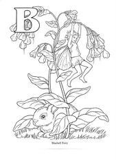 Coloring : Color Flower Fairies Free For Adults Fairy Printable Cicely Mary  Barker Alphabet Colouring Book Books Tale Sheets Tooth Sheet Pictures To  Print Colour In ... | 233x169