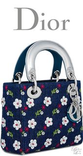 ♢Lady Dior bag collection  316de13f2719e