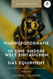 Die Makro-Fotografie ist faszinierend. Sie lässt uns tief in eine andere Welt e…