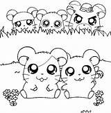 Cute Hamster Coloring Pages Image Search Results Coloring Pages Cartoon Coloring Pages Cute Hamsters