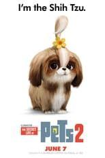 Telecharger The Secret Life Of Pets 2 Streaming Vf 2019 Film Gratuit En Ligne In 2020 Secret Life Of Pets Secret Life Pets