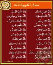صغار الحيوانات في اللغة Islamic Phrases Learn Arabic Language Words