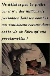 « ils seront appelés à la prosternation mais ils ne le pourront pas » ; Sourate 68 [Al-Qalam], Verset 42-43
