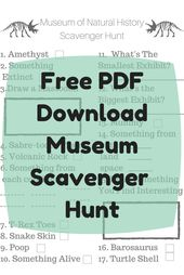 Day Journey Information: Museum Scavenger Hunt (Free PDF Obtain)