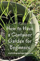 Wie man einen Container-Garten für Anfänger hat  # – Container Gartengestaltung