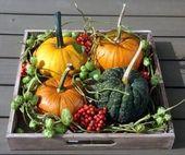Einfach gemacht … und doch eine attraktive Herbstdekoration – #attraktive #ein… – Herbst dekoration