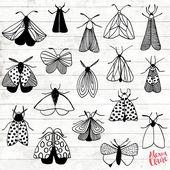 Motte Gekritzel Clipart – 27 Hand gezeichnete Motten Cliparts – Bugs Logo Art – Bugs Logo Elements – Motten Illustration – ACGABW47   – Ideen