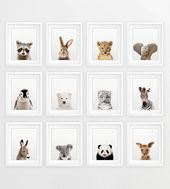 Nursery Animals Prints, Baby Animals Set 12, Nursery Decor, Woodland Animal Print, Safari Animal, Cute Baby Animals, Kids Room Printable Art