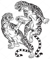 Tigers fighting . Two roaring big cats in the battle . Black and white tattoo st… – dekoration
