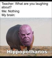 25 best funny memes hilarious jokes