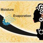 Wie Protein das Haar weicher macht Infografik