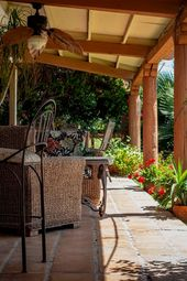 Home Insurance Best Quote 11507 20191124220447 62 Zebra Print