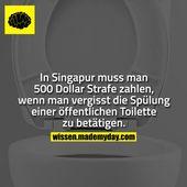 Das sollte man in Deutschland auch einführen