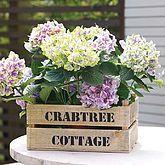 Handmade Wooden Garden Planter – natural habitat