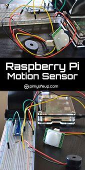 Himbeer-Pi-Bewegungssensor mit einem PIR-Sensor