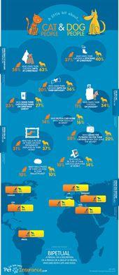 Eine Infografik, die die Unterschiede zwischen Katzen- und Hundevolk …