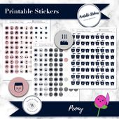 Icon planner stickers, functional printable icons for Happy Planner, Erin Condren, daily, weekly, monthly tasks, circle, round, punch, pdf