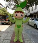 Cartoon Leaf Mascot Costume Leaves for Sale Fancy Dress Halloween Can Add Logo #…