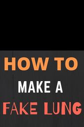 How to make a model lung