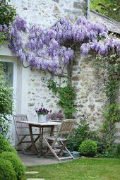 Photo of Seat under wisteria …