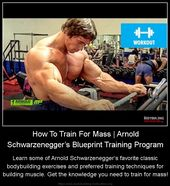 How to train for mass arnold schwarzeneggers blueprint training how to train for mass arnold schwarzeneggers blueprint training program learn some of arnold schwarzeneggers favorite classic bodybuilding exer malvernweather Images
