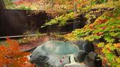 Top 10 Onsen Ryokan Hotels in Zao Onsen, Yamagata,…