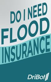 The Majority Of Homeowner And Renter S Insurance Policies Do Not