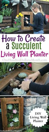DIY Sedum and Succulent Living Wall Planter – One Hundred Dollars a Month