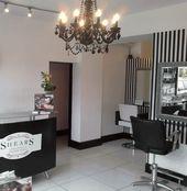 pet grooming shop design | ... pet enjoy your experience at Spa 4 ...