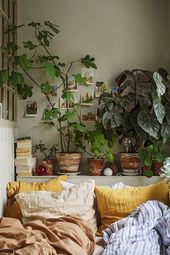 Eine kleine Wohnung voller grüner Pflanzen und Farben – PLANETE DECO hat