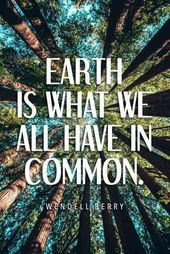40 Finest Environmental Quotes To Encourage You To Do Your Half To Save The Earth