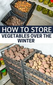 How to Store Vegetables Over the Winter – Modern and Vintage Storage Tips