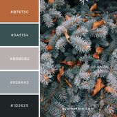 Aspen, United States Color Palette #107 – #Aspen #…