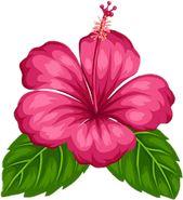 Oliveira Fashionando Moana Png Flores De Papel Flores Exoticas Arte Flor