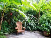30 Gorgeous Tropical Garden Plants Ideas For You   – Garden