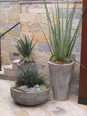 CA friendly design ideas   – Pflanzen und Blumen