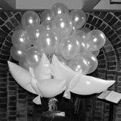 Mooie trouwballonnen met helium en originele bruidsduiven met helium maken je br…