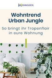 Living Trend Urban Jungle: So you bring tropical flair in your apartment
