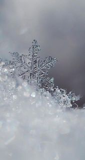 Photo of Eisige Schneeflocken Winter iPhone Android Handy Sperrbildschirm Wallpaper
