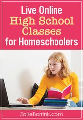 Dwell On-line Excessive Faculty Lessons for Homeschoolers