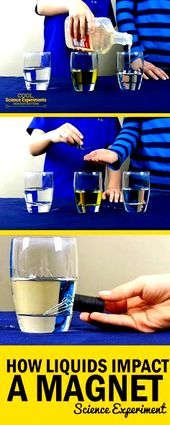 Try this simple science experiment and watch how different liquids impact magnetic force. #ScienceEx…