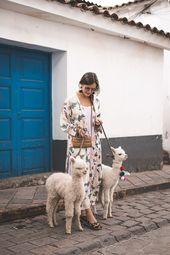 Peru Rundreise: Diese Stationen sind ein Muss! – Alpakas ❤️