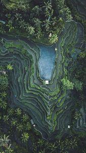 Tegallalang, Bali, Indonesien – #Bali #indonesia #T …