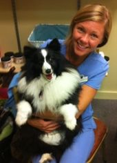 About Dr Natalie Holistic Veterinary Vets Integrative Medicine
